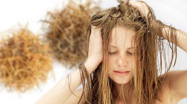 Маска от сожженных волос в домашних условиях