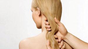 Увлажнение волос подсолнечным маслом