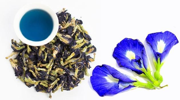 Цветок пурпурного чая